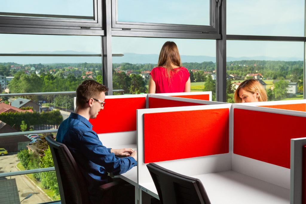 Silesia Start Up Coworking - Biuro z widokiem na góry